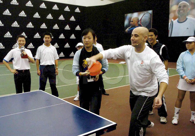 Table Tennis Ratings Rankings Player Profiles A Research