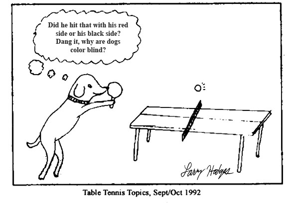 table tennis 2000 election photo cartoon why dogs dont like combination rackets